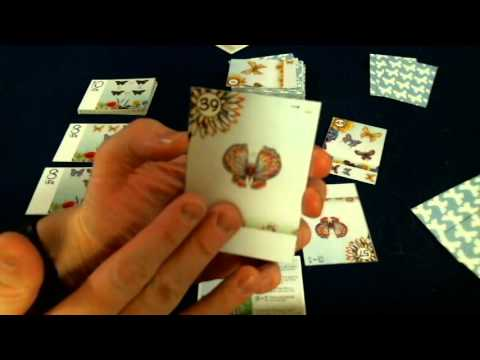 Bower's Game Corner: The Butterfly Garden Review