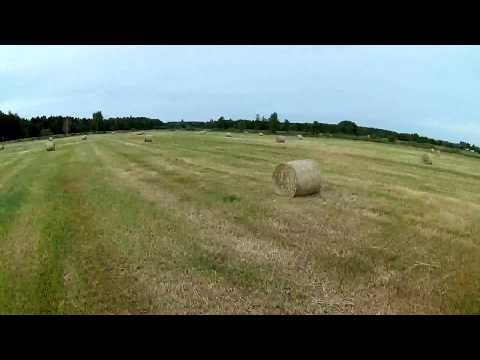 Summer time - Mobius mini lens B