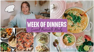 A WEEK OF DINNERS ~ Healthy Meals & Diet Updates!