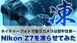 Nikon Z7を-25℃の山の中で凍らせてみた。ネイチャーフォトに必要なのは堅牢性である理由を解説