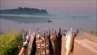Базы для рыбалка в тверской области сулежский борок