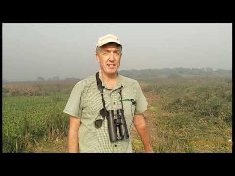 India Birding Tours