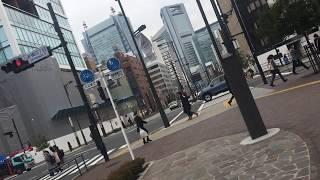 虎ノ門東京癒し散歩日常の風景氷点下を記録したビル街の冬の午後TokyowalkToranomonJapan