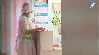 Ситуация с заболеваемостью гриппом и ОРВИ в Новгородской области нормализовалась