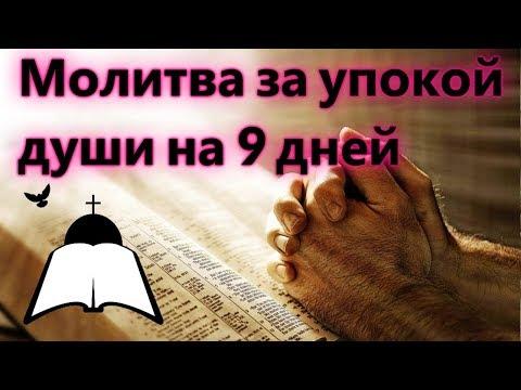 Молитва заупокой души усопшего на9дней