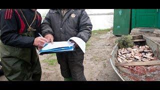 Нарушение правил рыбной ловли