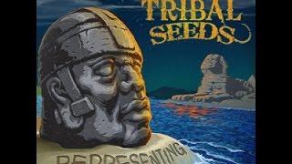 Tribal Seeds - Representing *FULL ALBUM* *NEW 2014*