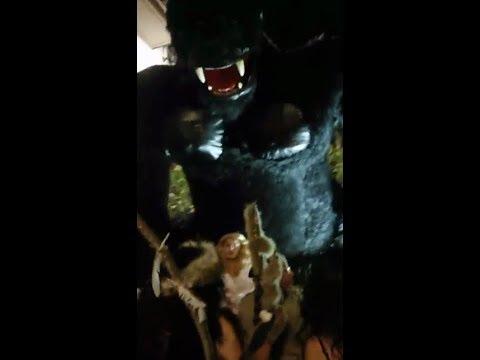 immagine di anteprima del video: Video Carnevale Estivo 2018 diretta streaming Laurenzana 17...