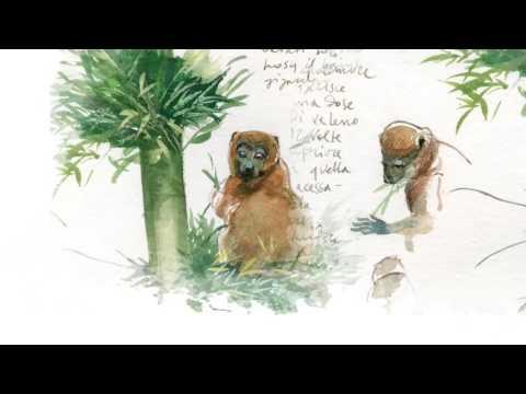 Verde Stupore - Madagascar