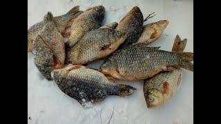 Рыбалка в пограничной зоне курганская область