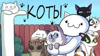 Наши Котики :3 | Our Cats :3 | TheOdd1sOut | James | Джеймс