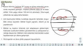 Eğitim Vadisi AYT Coğrafya 1.Föy Ekosistemlerin Özellikleri ve İşleyişi 1 (Biyoçeşitlilik ve Byomlar) Konu Anlatım Videoları