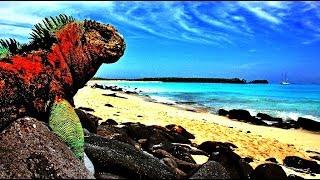 #отдых #турагентство #остров ТОП-5 САМЫХ УНИКАЛЬНЫХ ОСТРОВОВ МИРА! (видео)