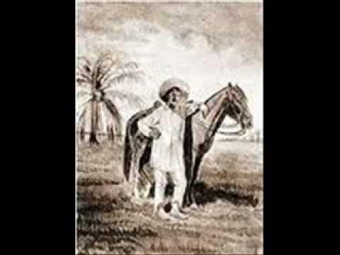 Llanero Amargo