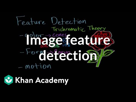 Feature detection and parallel processing (video) | Khan Academy