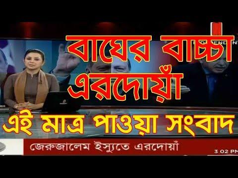 বাঘের বাচ্চা তুরস্কের প্রসিডেন্ট এরদোয়াঁ । (Bangla news, bangla news 24, bangla news today 2017)