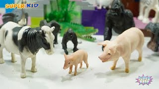 Baby Find Mom Zoo Animals toys For Kids Family Animals