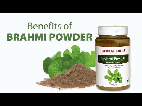 Ayurvedic Brahmi Powder 100gm - Healthy Hair & Memory Booster