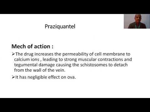 Paraziták a halnévből