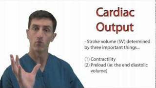 Cardiac Output - Physiology