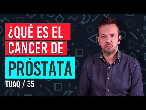 Próstata recorrido de vídeo