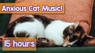 NEW Relaxing Cat Music! How to Relax an Anxious Cat! Calm a Stressed Cat and Help Kittens Sleep! 🐈