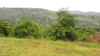 preview picture of video 'The Hills of Gomba District, Uganda, filmed from Victory Church Buyana'