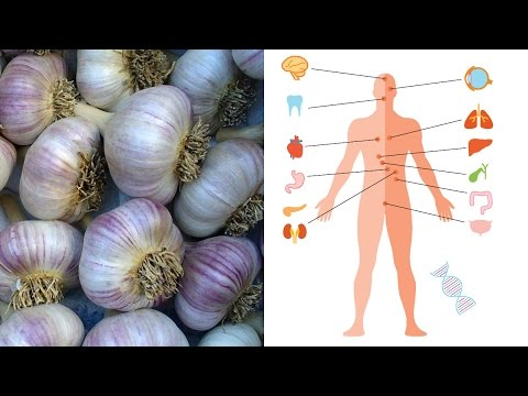 Video What is garlic good for? Benefits and medicinal uses for garlic | Natural Cures