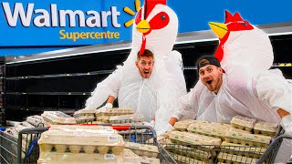 Buying ALL The Eggs.. AS Chickens!