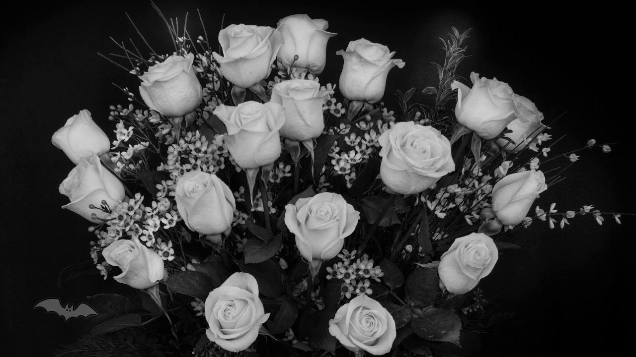 Clan Of Xymox - Jasmine And Rose