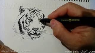 Тигр гелевой ручкой.