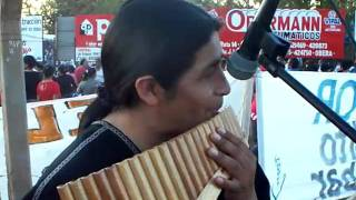 preview picture of video 'FIESTA NACIONAL DEL INMIGRANTE OBERA MISIONES.MOV'