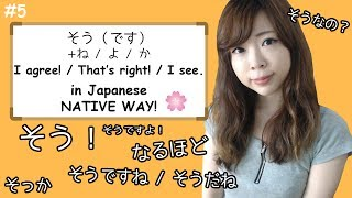 "#5 How to say ""I see"", ""I agree"", ""That's right"" (そう family) - NATIVE WAY ┃JAPANESE AMMO"