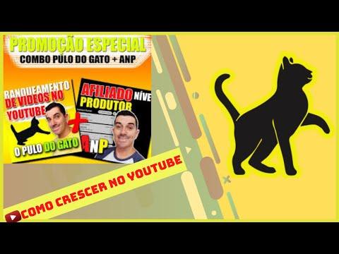 Ranqueamento de Vídeos no Youtube o Pulo do Gato!!