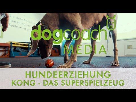 Hundeerziehung: Kong - Das Superspielzeug