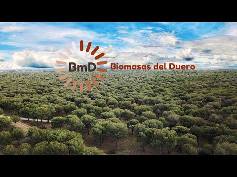 Biomasas del Duero