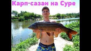 Рыбалка в чувашии на реке суре