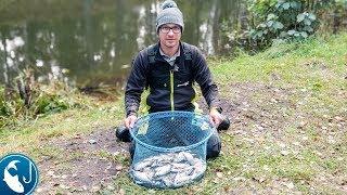 Ловля плотвы на малых реках в октябре
