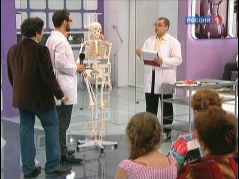 Количество костей в шейном отделе позвоночника