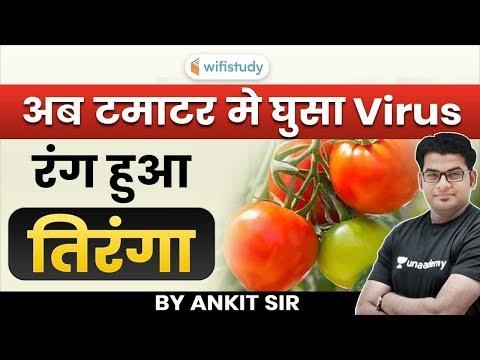 Virus,    | Explained by Ankit Gupta Sir