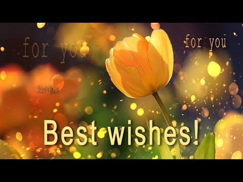 🌺🌺🌺 Best Wishes For You!  🌺🌺🌺 PARALLAX Video Greeting Cards