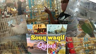 Souq Wagif Doha//Traditional Market//Pets Market//Gala Time with Madam & My Alaga sa Qouq Wagif