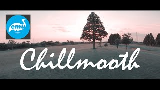 Fly with nice chill music track | Emuflight | Bluejay ESC 0.12 | FPV Drone Freestyle | GoPro