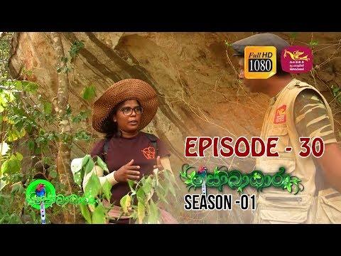 Sobadhara | Season - 01 | Episode 30 | Sobadhara Rupavahini