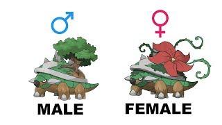 Grotle  - (Pokémon) - Turtwig Grotle Torterra Gender Difference Fanart