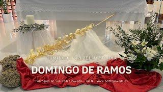Misas del Domingo de Ramos