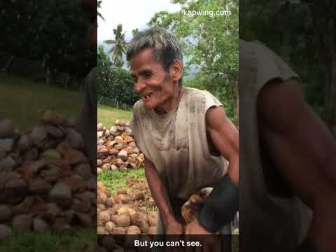 Old blind man dehusks coconuts for a living.