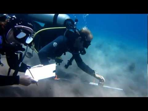 Diver Depth-Gage Profiling  – a simple, low-cost technique for underwater bathymetric surveying