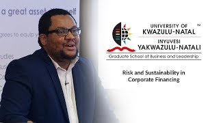 Risk and Sustainability in Corporate Financing Final