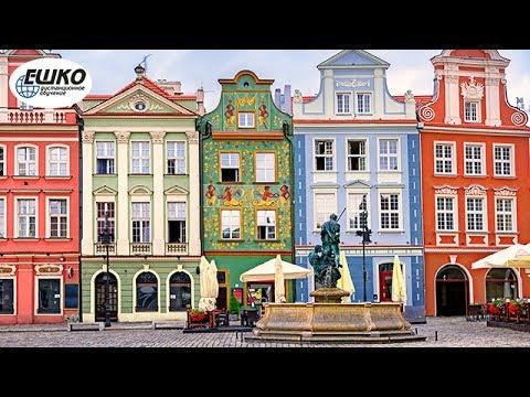 Польский язык. Аренда жилья. Переезд.